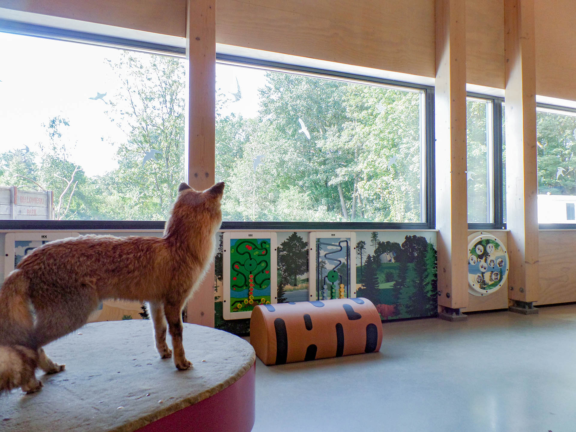 This picture shows a play corner in a visitors information centre of a Dutch national park